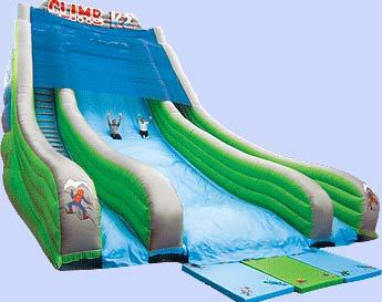Giant Slide Image