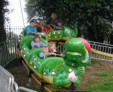 Go Gator Image